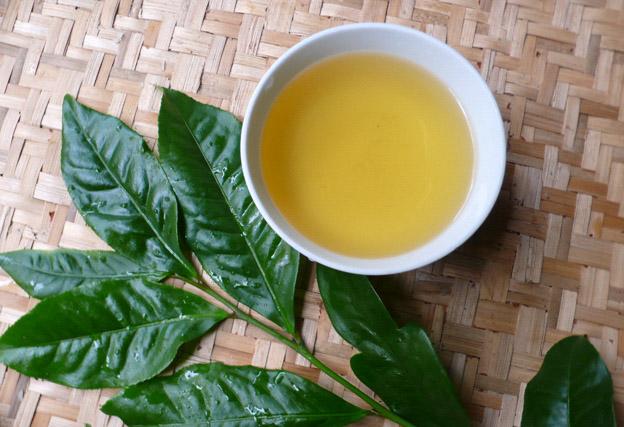 Thấm nước trà xanh lên vết sẹo thâm hằng ngày sẽ giúp làm mờ sẹo thâm