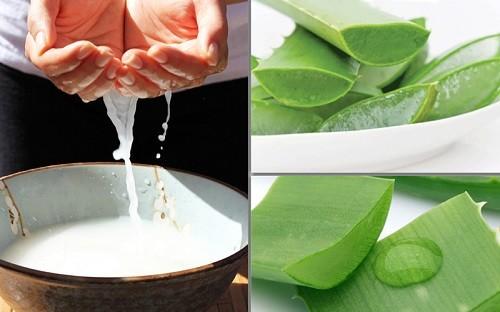 Nước vo gạo kết hợp với nha đam trị sẹo thâm hiệu quả