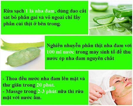 Bạn hãy áp dụng ngay cách chữa trị sẹo mụn bằng nha đam